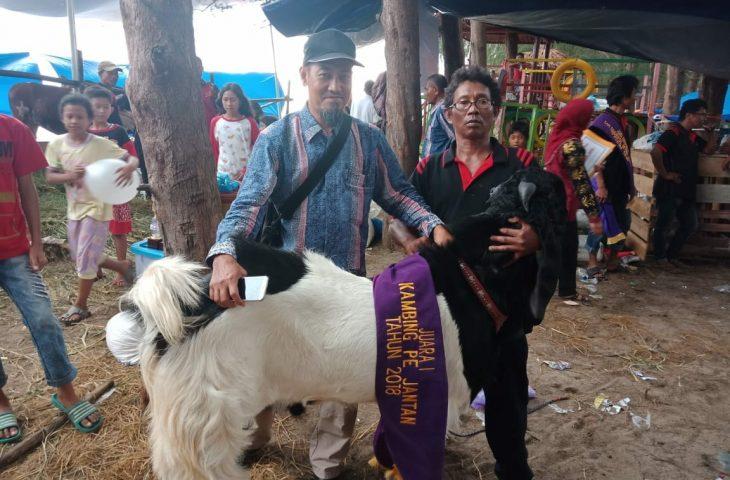 Livestock Expo 2018 Agam Raih Beragam Gelar Juara