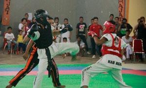 Lima Petarung Agam Masuk Semifinal