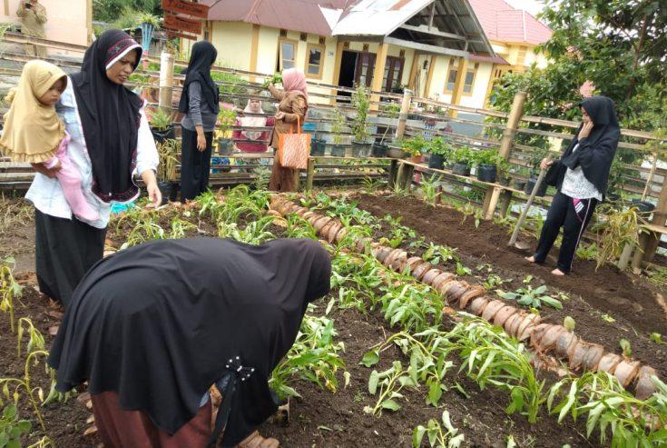 Dasawisma Bougenville Sariak Wakili Agam ke Provinsi