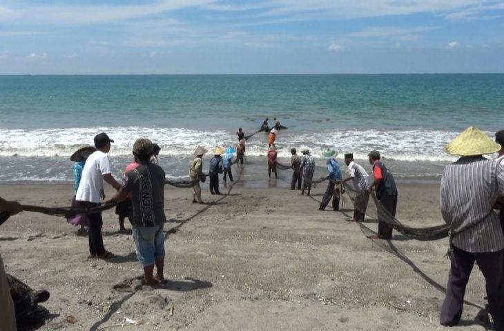 Maelo Pukek, Tradisi yang Masih Dipertahankan Nelayan Agam