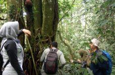 BKSDA Sumbar Survei Dua Lokasi Calon Kawasan Ekosistem Esensial di Agam