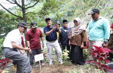 """""""Ratu Kamang"""" Manggis Terbaik di Indonesia"""