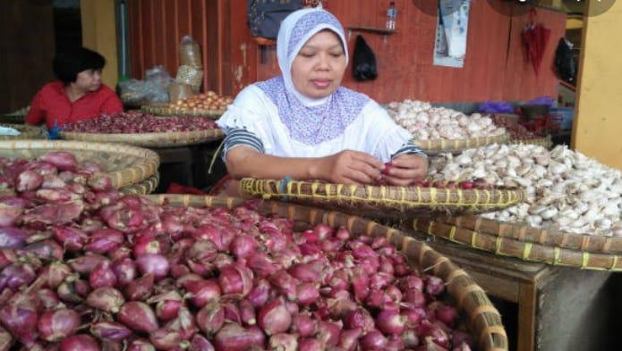 Tahun ini, Pemkab Agam Targetkan 35 Hektare Lahan Ditanam Bawang Merah
