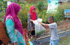 Bupati Agam Bantu Beragam Jenis Bibit Untuk Kelompok Dasawisma Kamboja I