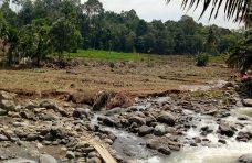 100 Hektare Lahan Pertanian Rusak Akibat Banjir Bandang Ampek Nagari