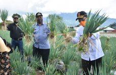Indra Catri : Pertanian Jadi Katup Pengaman Hadapi Covid-19