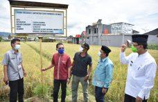Dengan 1/4 ha Lahan, Gapoktan Tumbuh Lestari Bisa Produksi Padi Organik 1,5 Ton