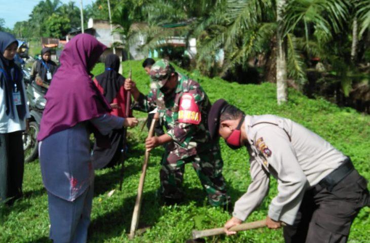Ampek Nagari Intensifkan Penyisipan Pohon Pelindung Sepanjang Jalur Lintas Sumatera