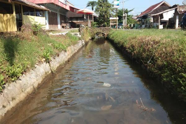 Besok, Pemuda Rimbo Nunang Gelar Mancing Mania Ikan Larangan