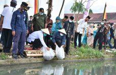 Tingkatkan Ketahanan Pangan Nagari, Bupati Agam Bagi Bibit Ikan dan Buah-Buahan