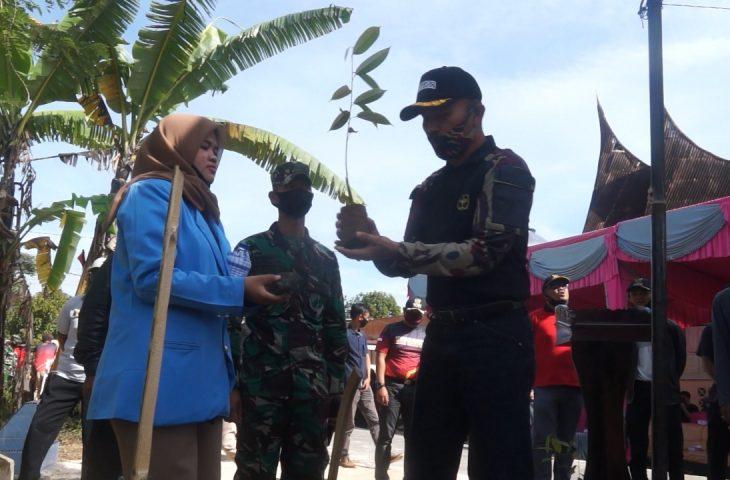 Ciptakan Lingkungan Hijau, Mahasiswa KKN Tanam Pohon di Jorong Lundang