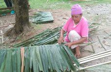Melirik Pembuatan Atap Rumbio Oleh Kaum Ibu di Padang Lansano