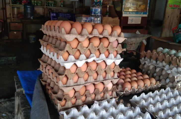 Pasokan Mulai Meningkat, Harga Telur di Lubuk Basung Berangsur Turun