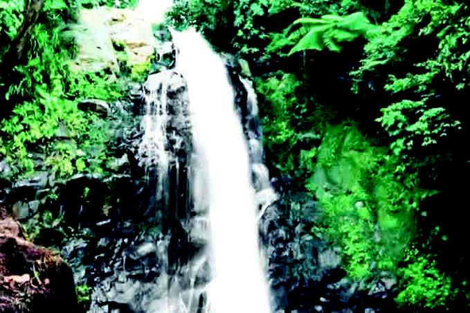 Kawasan Wisata Alam Bisa Majukan Ekonomi Masyarakat Lokal