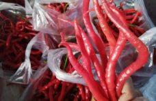 Cabai Merah Keriting Turun- Cabe Rawit Rp70 Ribu per Kilo