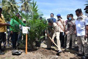 Bupati Agam Tanam Perdana Peremajaan Sawit Rakyat di Lahan KUD Tiku V Jorong