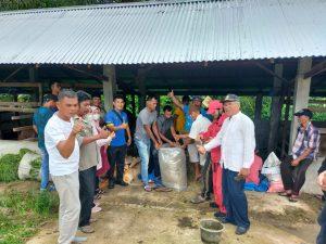 Pemnag Kampuang Tangah Gelar Pelatihan Pembuatan Pakan Ternak