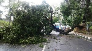 Cuaca Ekstrem, BPBD Agam Imbau Masyarakat Tingkatkan Kewaspadaan