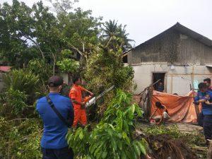 Ditimpa Pohon, Rumah Warga di Jorong Pasia Rusak Berat