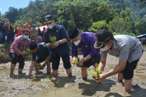 Wabup Irwan Fikri Buka Festival Budaya Tanam Padi di Pagadih