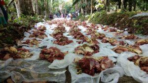 """Tradisi """"Maumpuak"""" Daging Kurban Di Sungai Batang"""