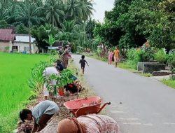 Masyarakat Jorong Pasa Durian Tanam Bunga di Sepanjang Jalan
